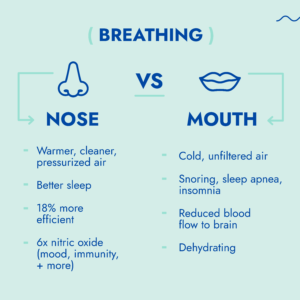 Nose breathing versus mouth breathing.  Nose breathing leads to warmer, cleaner air, better sleep, and less stress